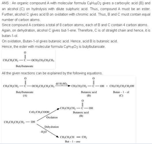 NCERT CBSE 12.11 Solution Write Equations