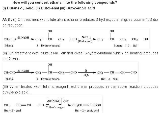 NCERT CBSE 12.8 Solution How to convert