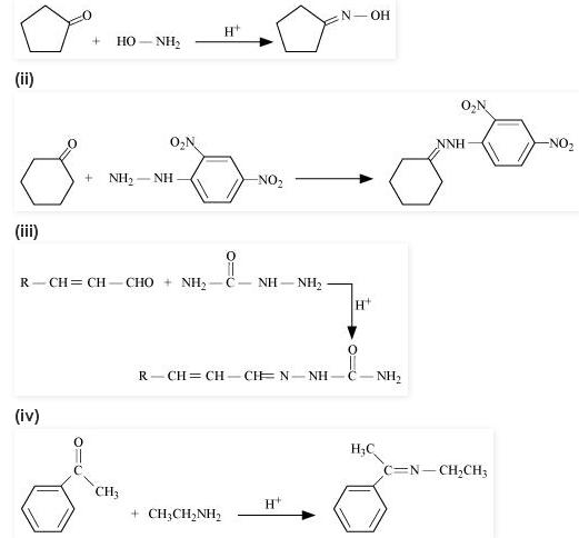 NCERT CBSE chapter 12 extra 5 Organic Chemistry