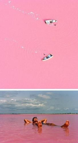 Senegal bacteria Retba Lake north of Cap Vert peninsula