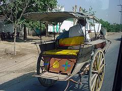 Tonga-2 Horse cart