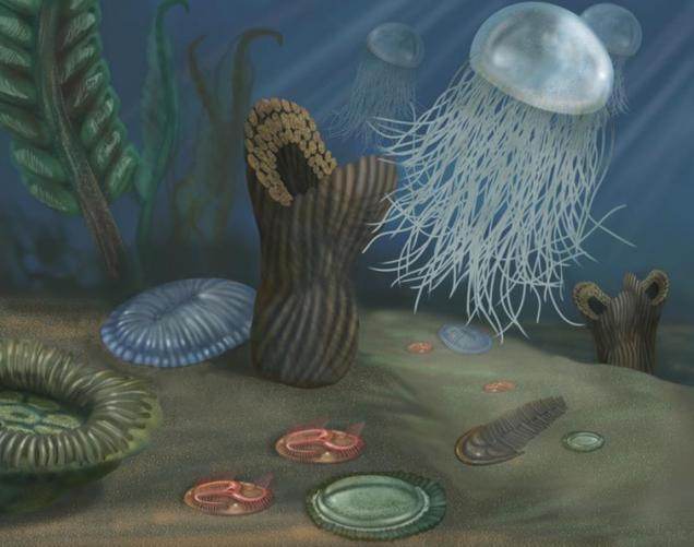 18 Silurian sea