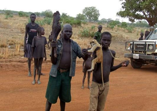 2 Monkey caught for lunch in Sudan