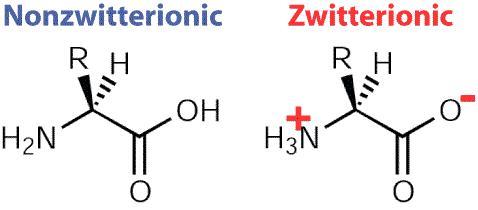 2 Nonzwitterionic and Zwitterionic