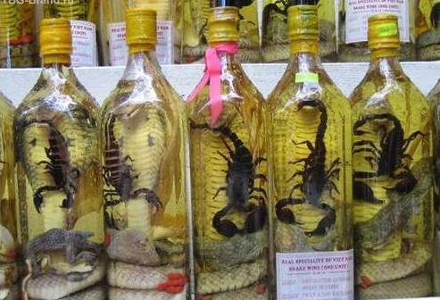 2 Scorpion wine