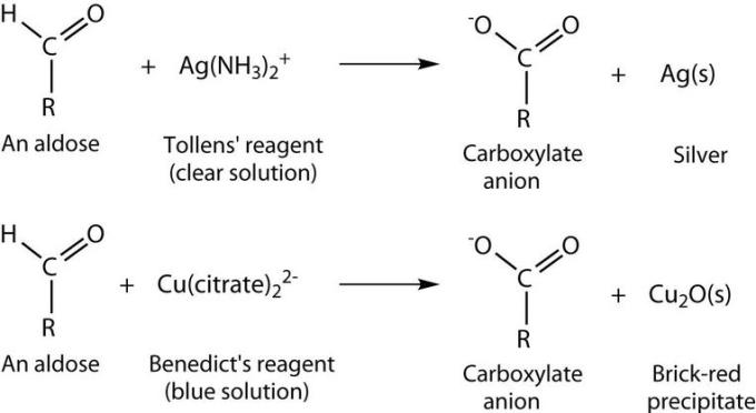2 Tollen's and Benedict's reagent