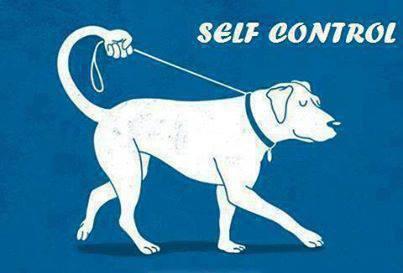 31 Amazing self control