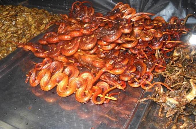 4 Snake delicacy in combodia