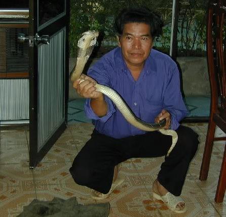 5 Snake Charmer caught a snake