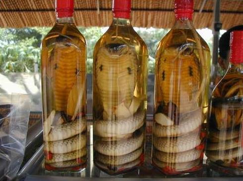 5 Snake wine