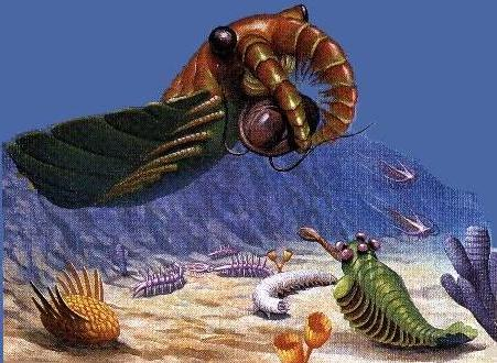 9 Paleozoic animals