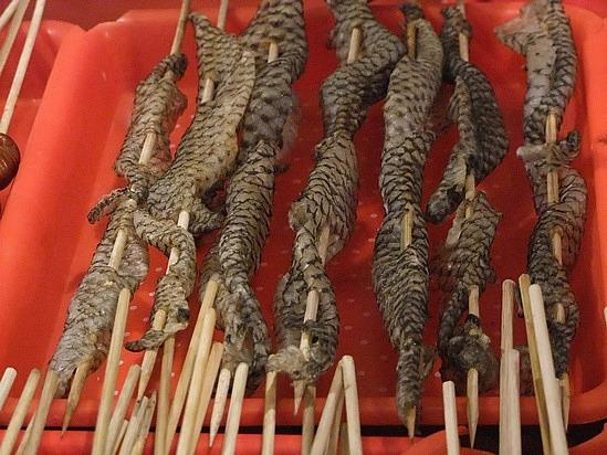 9 Snake meat for sale in sticks