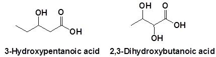 11 3-Hydroxypentanoic 2,3-Dihydroxybutanoic acid SKMClasses IIT JEE Bangalore