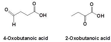 12 4-oxobutanoic acid 2-Oxobutanoic acid SKMClasses Bangalore IIT JEE