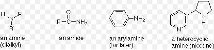12 Arylamines
