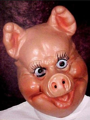 12a person with pig mask