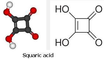 15 Squaric acid SKMClasses IIT JEE Bangalore
