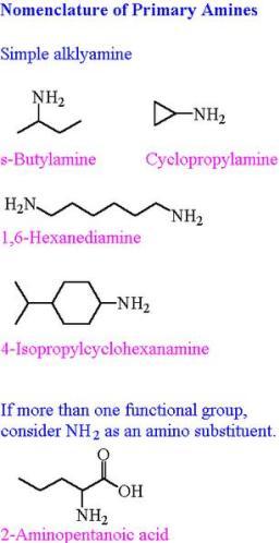 17 Primary amines