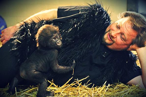 1b cagekkeper with gorilla