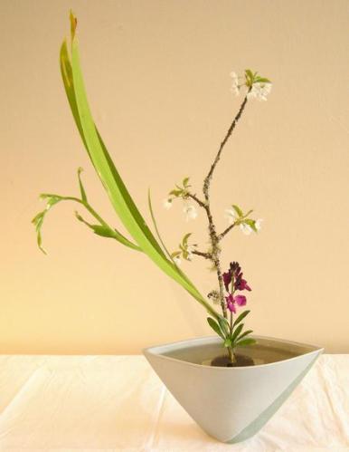 2q Ikebana