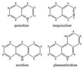 3 quinoline isoquinoline acridine phenanthridine