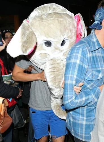 4g elephant mask