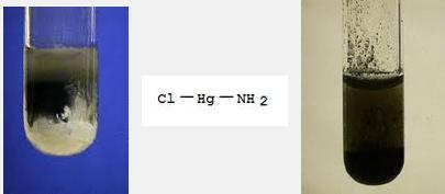 5 HgNH2Cl Hg + Hg(NH2)Cl black ppt