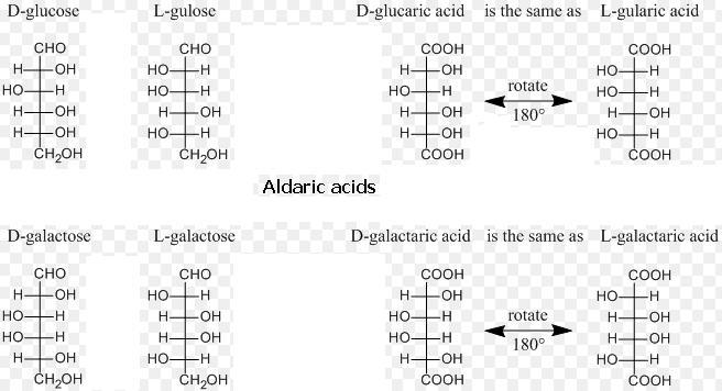 6 Aldaric acids SKMClasses IIT JEE