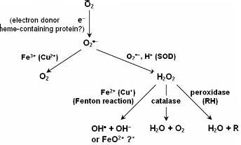 7 Fenton's reagent IIT JEE SKMClasses