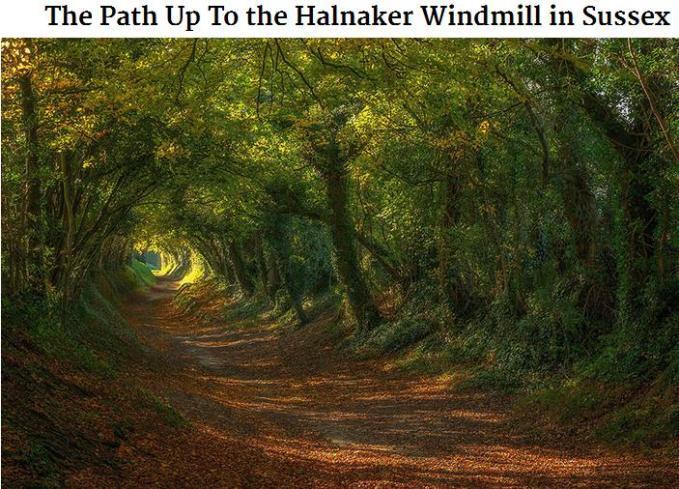 Halnaker sussex path