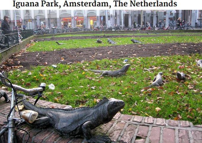 Iguana Park Amsterdam