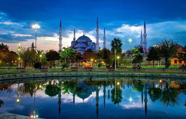 31y Turkey