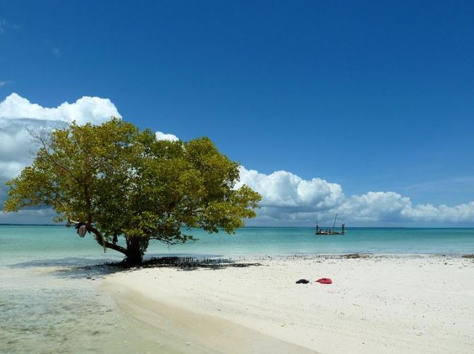 32h Zanzibar