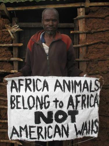 12g african animals are from Africa