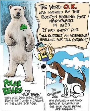 51e Dog sniffs if polar bear is pragnent