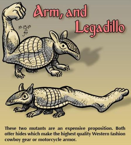 Arm and Legadillo