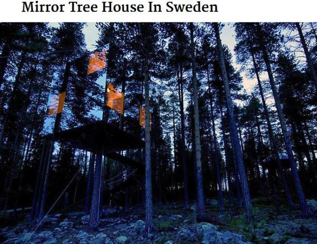 Mirror treehouse in sweden