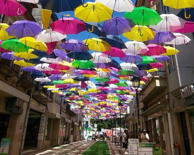 Umbrella Road roof