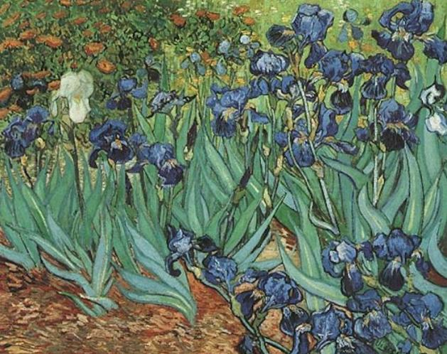 15 Irises sold for 54 M Dollar in 1987