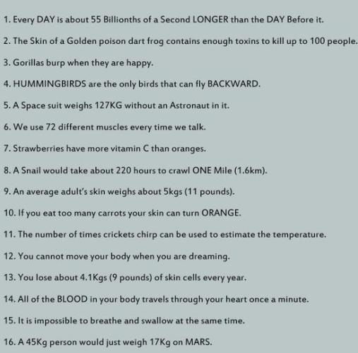 13 Facts