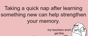 24 quick nap to remember