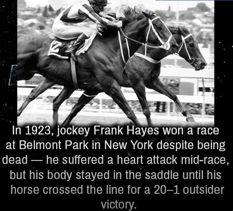 4 1923, jockey Frank Hayes won a race at Belmont Park in New York
