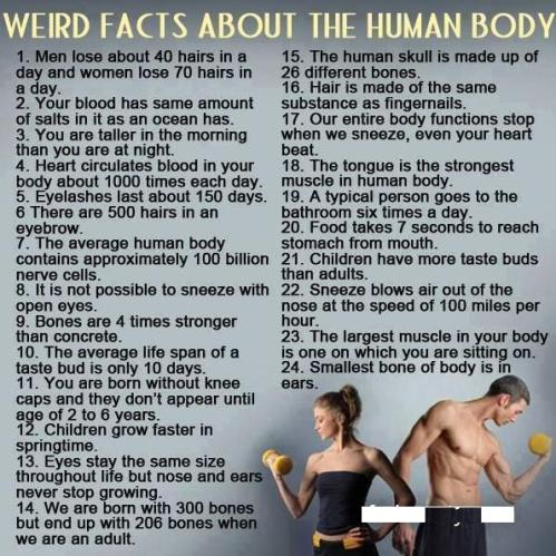 57 Body facts