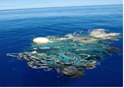 7 Garbage patch in ocean